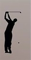 Picture of Single Golfer